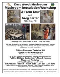 2017 Deep Woods Mushroom Workshop-Flyer